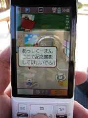 IMG_2304.jpg